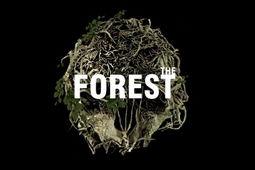 森林简体中文版